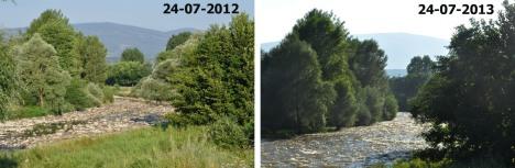 Comparació 1 any 1